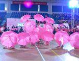 Bệnh viện FV đồng hành cùng Ngày hội nón hồng 2019